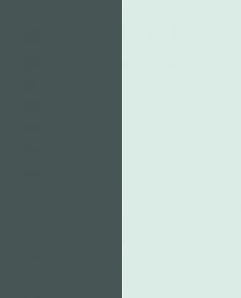 Charcoal - Green_2